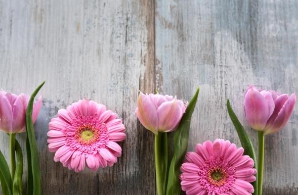 powiew wiosny