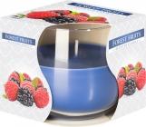 Świeca zapachowa w szkle Owoce Leśne sn71-13