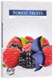 Podgrzewacze zapachowe Owoce Leśne p15-13