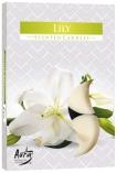 Podgrzewacze zapachowe Lilia p15-58