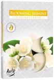 Podgrzewacze zapachowe Kwitnący Jaśmin p15-169
