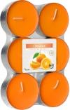 Podgrzewacze zapachowe maxi 6szt. Pomarańcza p35-6-63