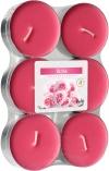 Podgrzewacze zapachowe maxi 6szt. Róża p35-6-78