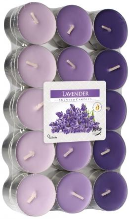 Podgrzewacze zapachowe 30szt. Lawenda p15-30-79