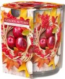 Świeca zapachowa Złota Jesień w prostym szkle z wzorem sn72s-03