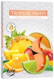 Podgrzewacze zapachowe Owoce Tropikalne p15-71