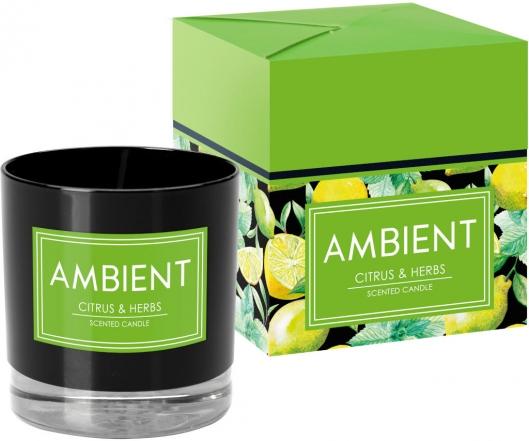Ambient Citrus & Herbs sn81-095-277