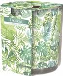 Świeca zapachowa Tropikal w prostym szkle z wzorem sn72s-20