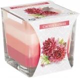 Świeca zapachowa trójkolorowa Kwiat Kaktusa snk80-312