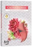 Podgrzewacze zapachowe Kwiat Kaktusa p15-312