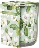 Świeca zapachowa Wiosenne Orzeźwienie w prostym szkle z wzorem sn72s-40