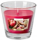 Świeca zapachowa w szkle Aurelia Jabłko - Cynamon sn90-87