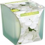 Świeca zapachowa w matowym szkle Białe Kwiaty snk80m-179