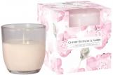 Świeca zapachowa w pastelowym szkle Kwiat wiśni-bursztyn sn75b-323