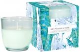Świeca zapachowa w pastelowym szkle Subtelna wanilia-piżmo sn75b-324