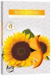 Podgrzewacze zapachowe Słoneczniki p15-330